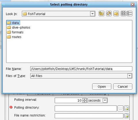 Directory Adapter Polling Directory